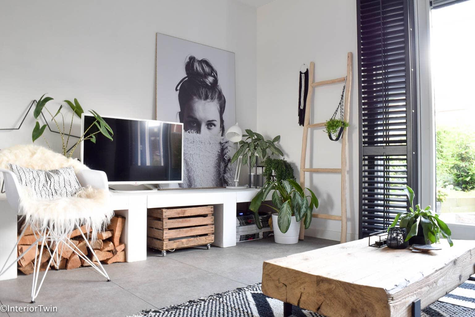 planten in de woonkamer - InteriorTwin