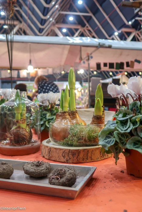planten kreadoe beurs