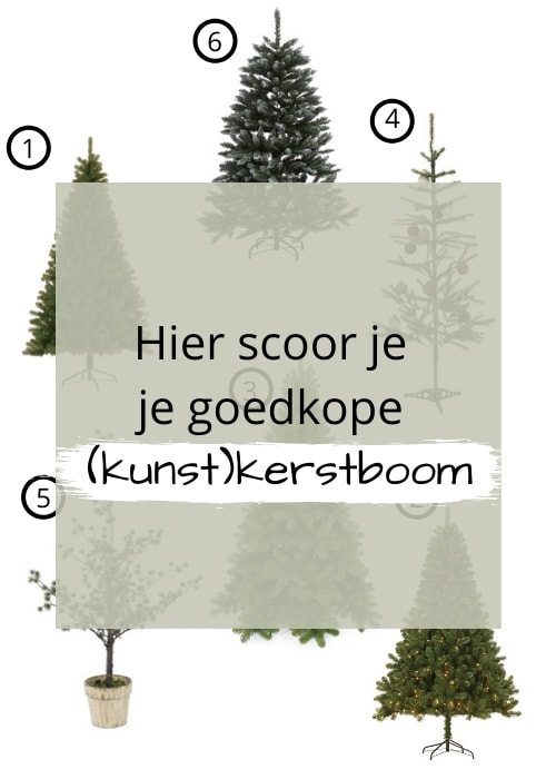 goedkope kerstboom kopen