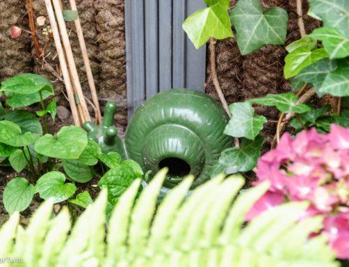 Slakken in je tuin bestrijden: handige tips tegen overlast